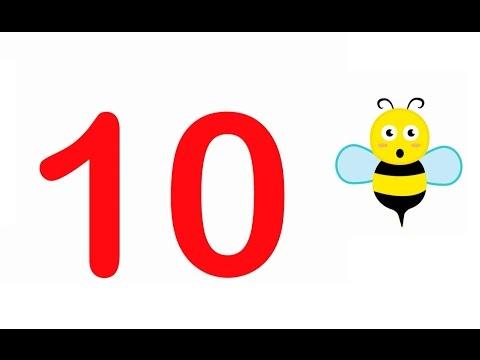 Leren Tellen - Tellen Tot 10 (tien) - Cijfers Leren Voor Peuters & Kleuters
