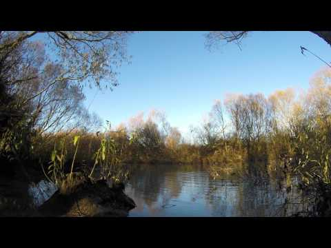 Opening weekend 2015 - Cupped Wing Calls NZ