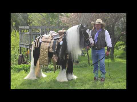 Wagner Rides A Golden Saddle