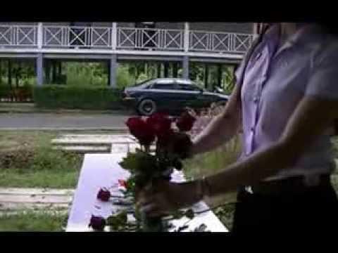 การจัดดอกไม้แบบพุ่มกลม