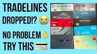 Tradelines Gone!? No Problem  Credit Building BluePrint for 2021!