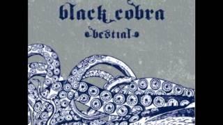 Black Cobra - Omniscient