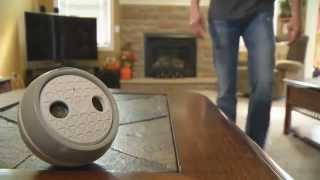 Motorola Bark 500u (indoor Bark Deterrent)