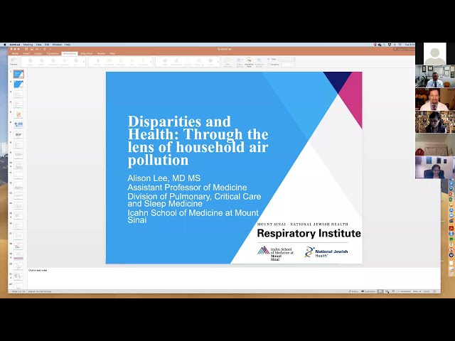 Disparities and Health: Through the Lens of Household Air Pollution Exposure