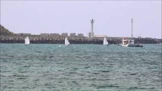 石垣島でOP級ヨットレースが展開