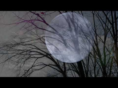 Friends Unseen -words, music, production by Lee Michael Walton.A mystical experience. Lunar music