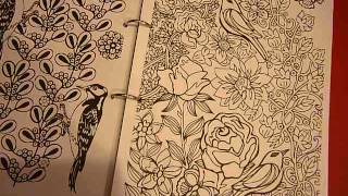 Really Beautiful Colouring Books For Grown Ups!