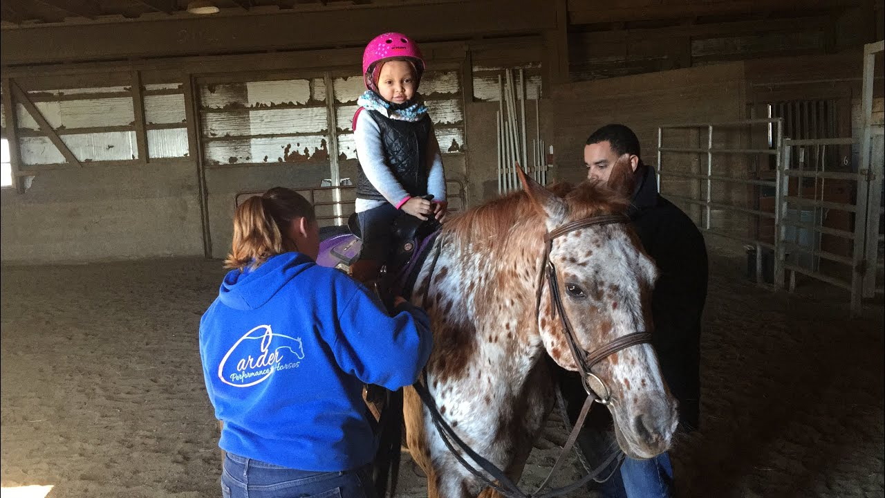 TODDLER HORSE RIDING LESSON | KIDS RIDING HORSE | HORSE RIDING LESSONS | APPALOOSA HORSE