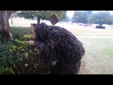 Kid (me) Dresses up in Ghillie Suit at North Caddo high school.