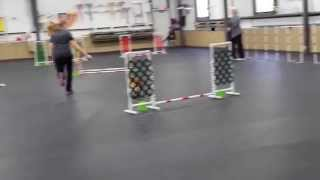 """Dally-masters 4"""" Jumpers Queen City Dtc 11/8/14"""