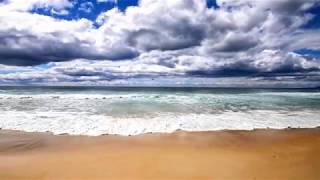 Weltreise - Tom & Ella Moments - Tasmanien in 3 Minuten - 18 Roadtrip Highlights - Land der Teufel