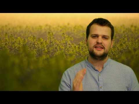 4. Dýchej Slovo - Body k meditaci na 4. neděli postní