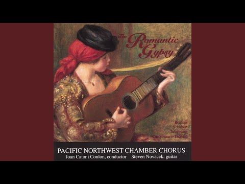 #4 Zigeunerlieder Op. 103