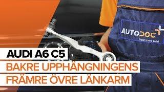 Byta Länkarm hjulupphängning bak och fram på AUDI A6 Avant (4B5, C5) - videoinstruktioner