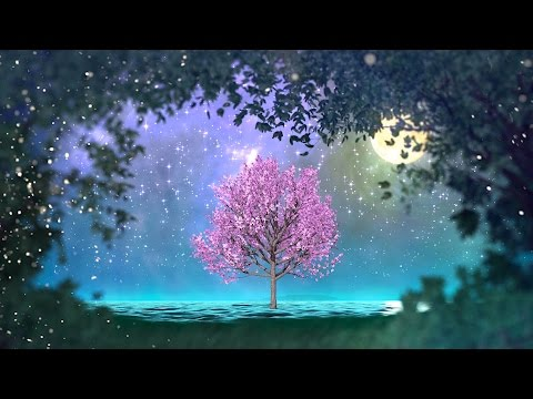 2 hours of peaceful, relaxing, nature instrumental music: