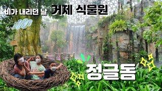 거제 식물원 정글돔