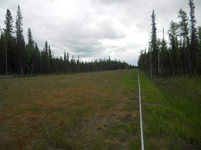 Land For Sale: LOT 8 TIMBER TRAIL,  NORTH POLE, AK 99705 | CENTURY 21