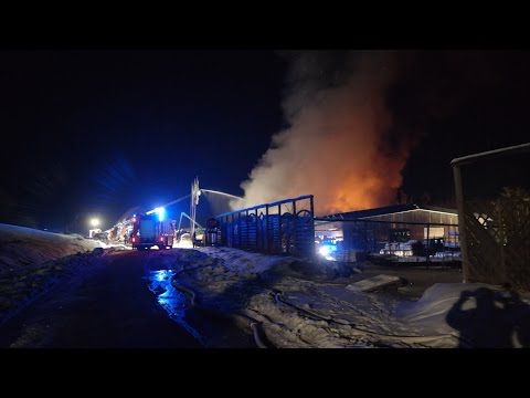 Großbrand in Nordhessen - 180 Einsatzkräfte in Schauenburg 22.01.2017