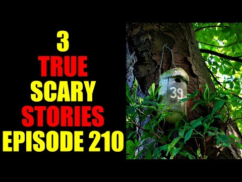 3 TRUE SCARY STORIES EPISODE 210