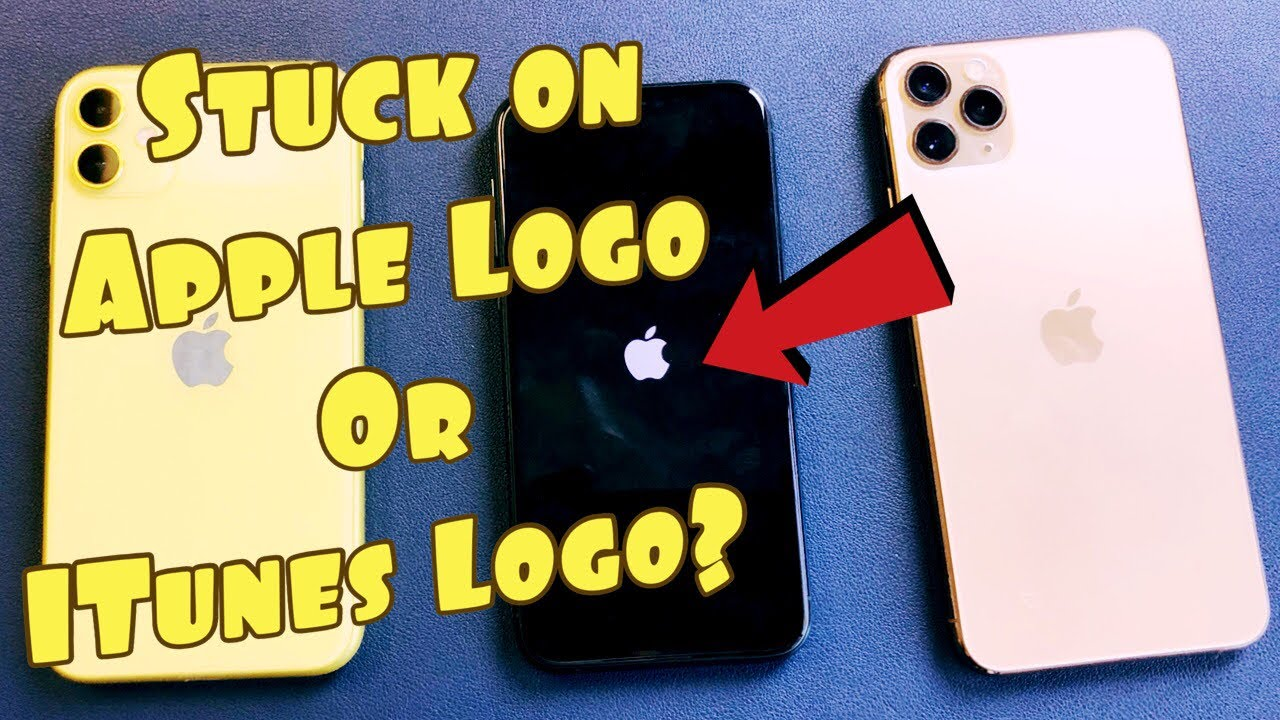 iPhone 11 Stuck on Apple Logo or iTunes Logo FIXED! (1 Minute Fix)