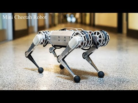 Mit's Mini Cheetah Robot Can Do Backflips Now- Ai Robot Dog.