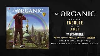 """ABDI """"ENCHULE"""" ORGANIC ALBUM"""