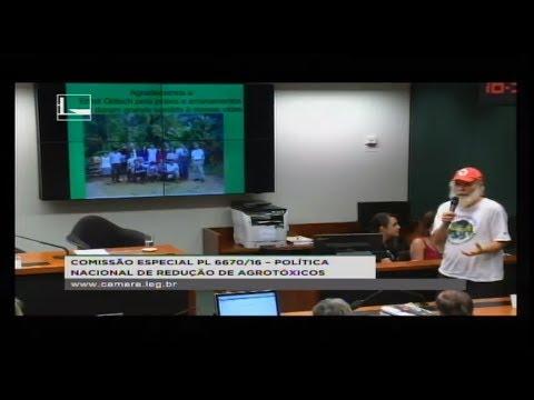 PL 6670/16 - POLÍTICA NACIONAL REDUÇÃO AGROTÓXICOS - Sistemas Agroflorestais - 08/08/2018 - 14:38