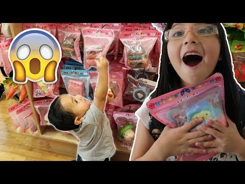 2 Year Old Brother Shops For My SQUISHIES! SQUISHIES AND SLIME VLOG!