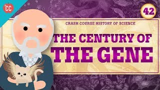 The Century of the Gene: Crash Course History of Science #42
