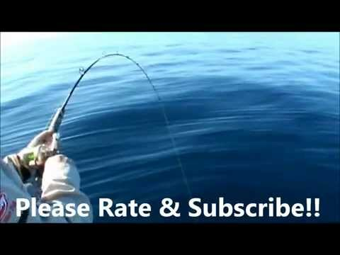 Easy Coral Trout fishing rig!! Fishing Tips!!