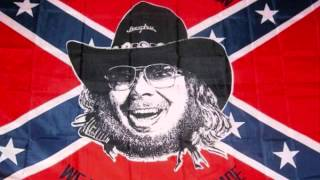 hank williams jr if heaven ain t alot like dixie excellent quality