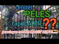 Cendet Peles Tapi Gacor Cocok Buat Pancingan Cendet Muda Anda  Mp3 - Mp4 Download
