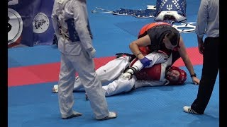 Bratislava Open 2017 - Taekwondo - Seniors Male A +87 final with golden point