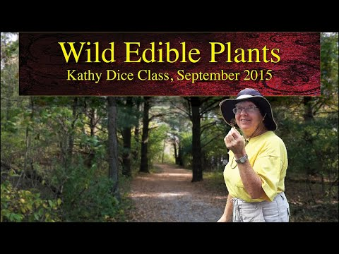 Wild Edible Plants Class by Kathy Dice