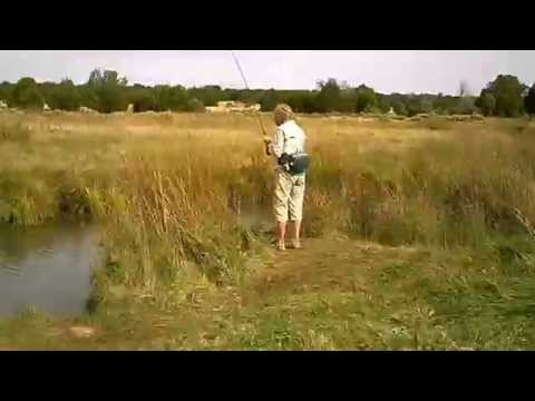 Silver creek az fishing in october 2015 youtube for Silver creek fishing report