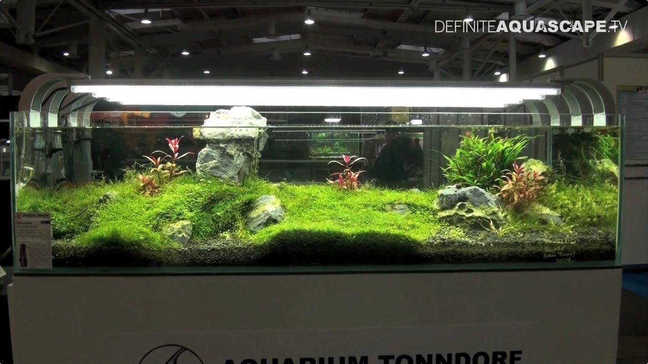 Aquarium Ideas - planted aquariums of Heimtiermesse 2014, Hannover, pt. 1 - YouTube