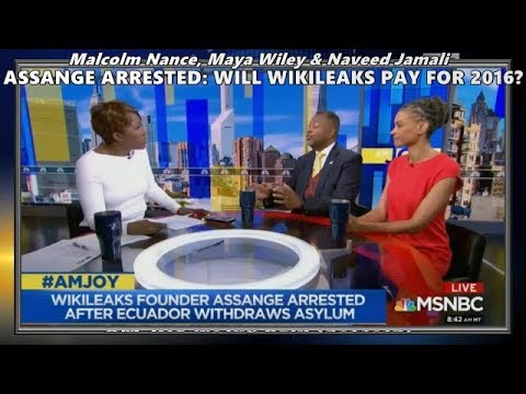 Download Assange Arrested: What To Do About Wikileaks // Malcolm Nance - AM JOY MSNBC 4/13/19