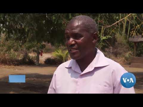 Malawi Works To Contain Overfishing On Lake Malawi