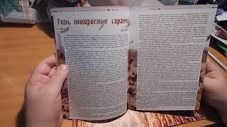 Обзор журнала Евангелие за колючей проволокой №4 2017
