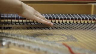 Diễm Xưa Piano