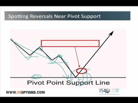 Pivot fx options