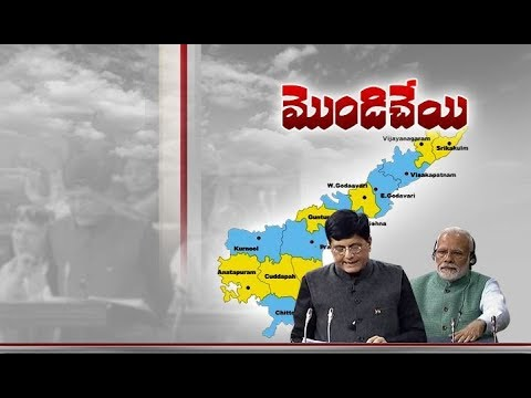 Andhra Pradesh Govt Disappointed | with Union Budget 2019