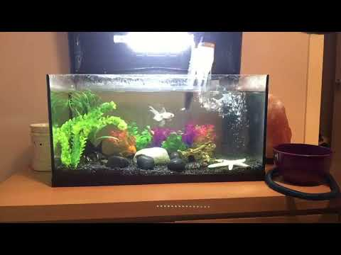 Fish Tank Cleaner Bedee Aquarium Battery Vacuum Cleaner Cleaning & Maintenance Fish & Aquariums