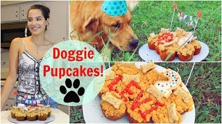 Homemade Cupcakes For DOGS!
