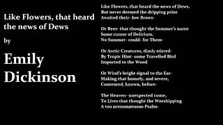 Like Flowers that Heard the News of Dews by Emily Dickinson Poetry Reading