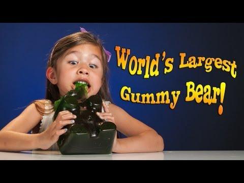 4-year-old Devours WORLD'S LARGEST GUMMY BEAR!