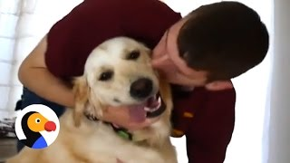 Dogs Reunite With Soldier Dad | The Dodo
