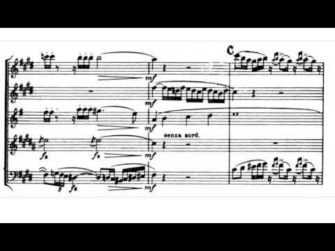 Carl Nielsen - Wind Quintet Op.43 I. Allegro Ben Moderato (w/score)