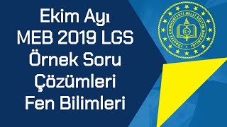 Ekim Ayı / MEB 2019 LGS / Örnek Soruları Ve Çözümleri / Fen Bilimleri
