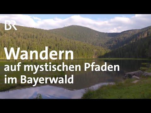 Pfade im Bayerischen Wald: Grenzgänger | Zwischen Spessart und Karwendel | BR